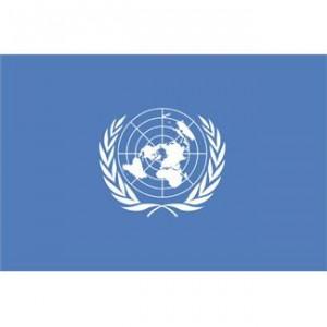 """לאו""""ם יש חבר חדש, בארץ לא ממש ניסו לעצור את זה"""